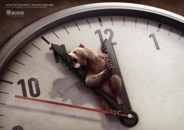 brown bear crushed by hands of a clock