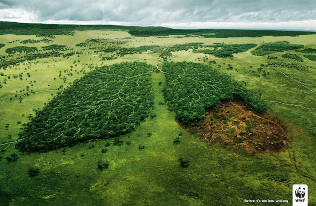 Best advertisements campaigns - WWF